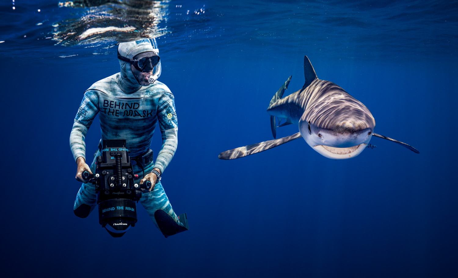 A diver films next to a blue shark